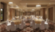 Grandballroom Double Tree by Hilton wedding