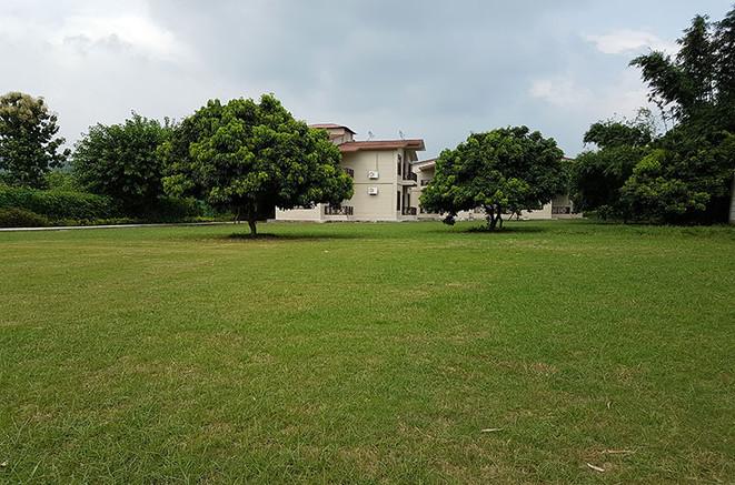 Garden-Area.jpg