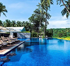 Novotel Goa Resort & Spa.jpg