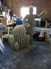 Cactus C3P0 & R2D2