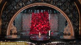 2014 Oscar's Rose Curtain