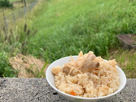 天然マイタケの炊き込みご飯