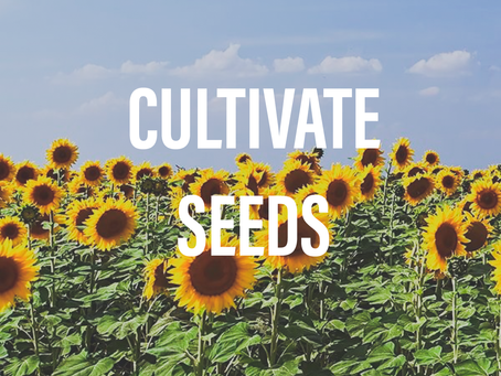 Cultivate Seeds