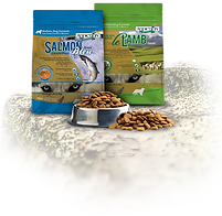 Addiction Pet Food products.webp