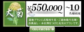 大菊.png