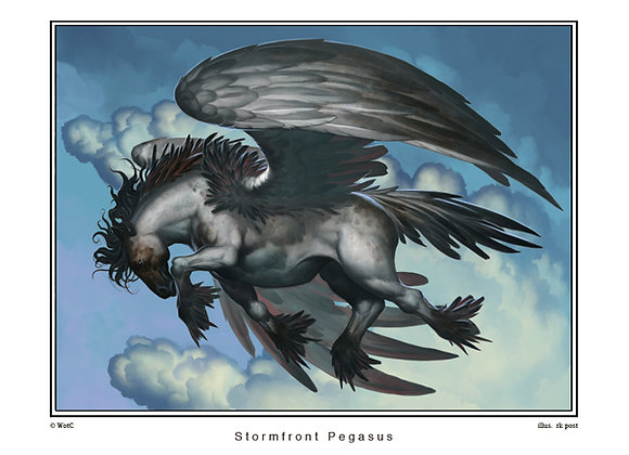 MP22 Stormfront Pegasus Print