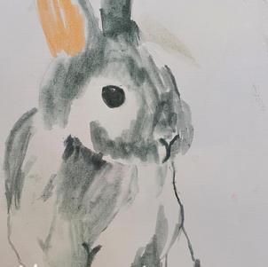 """Bunny"" | Kyle L. | $45"
