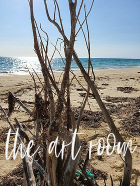 Beached Tree Series 5