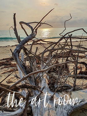 Beached Tree Series 1
