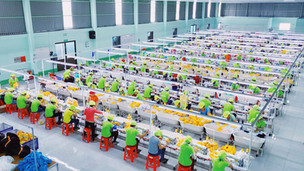 Vietnam : Factory #4