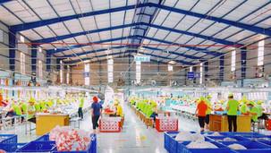 Vietnam : Factory #2