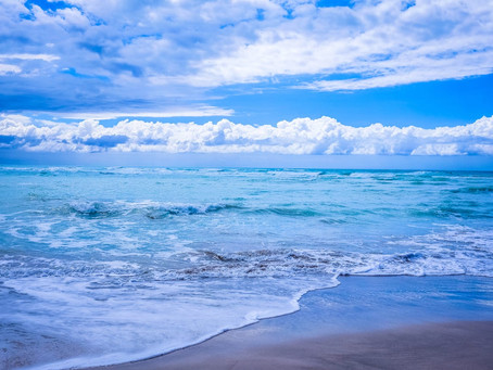 Australia's Bleached Ocean