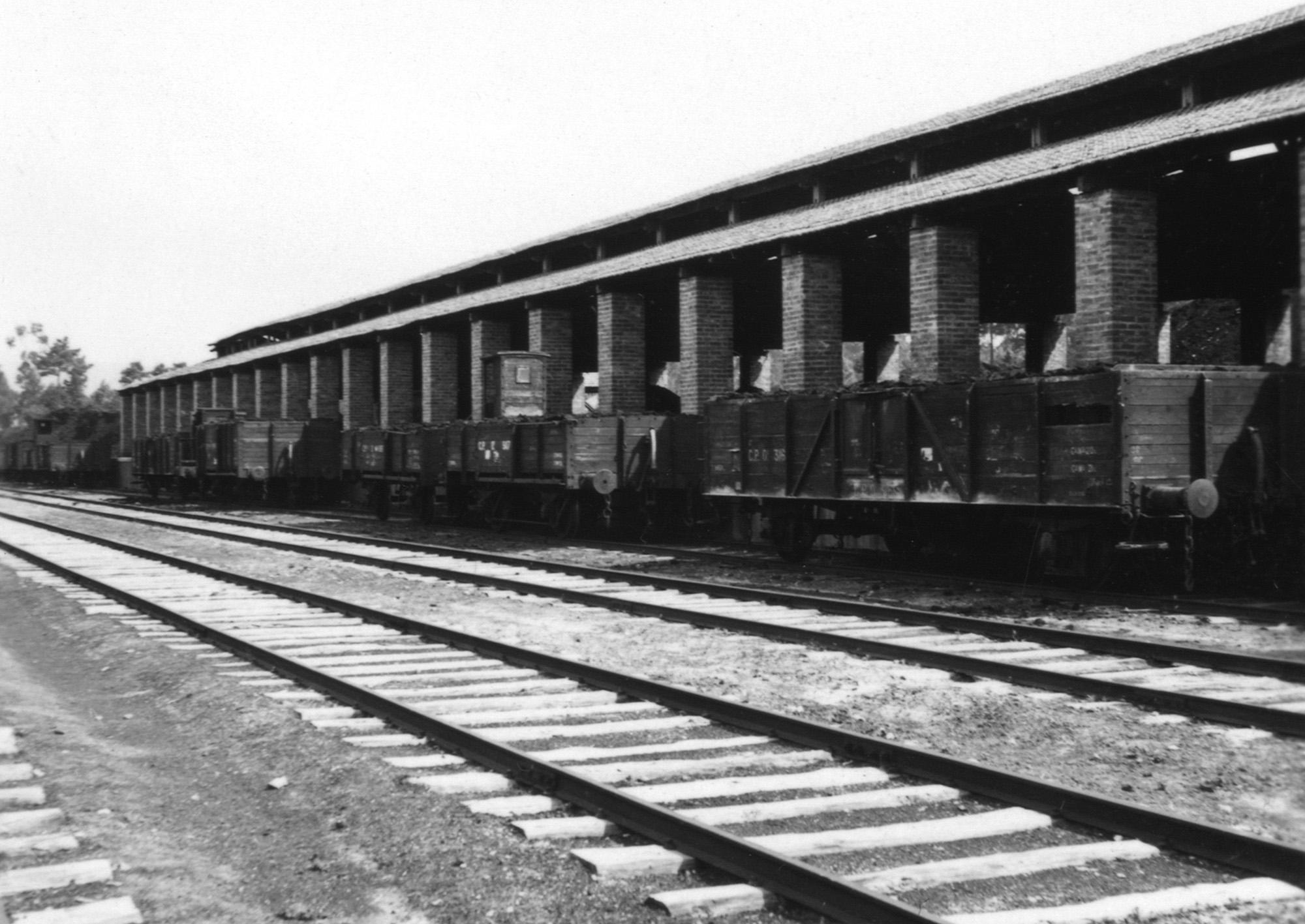 Caminho-de-Ferro Mineiro