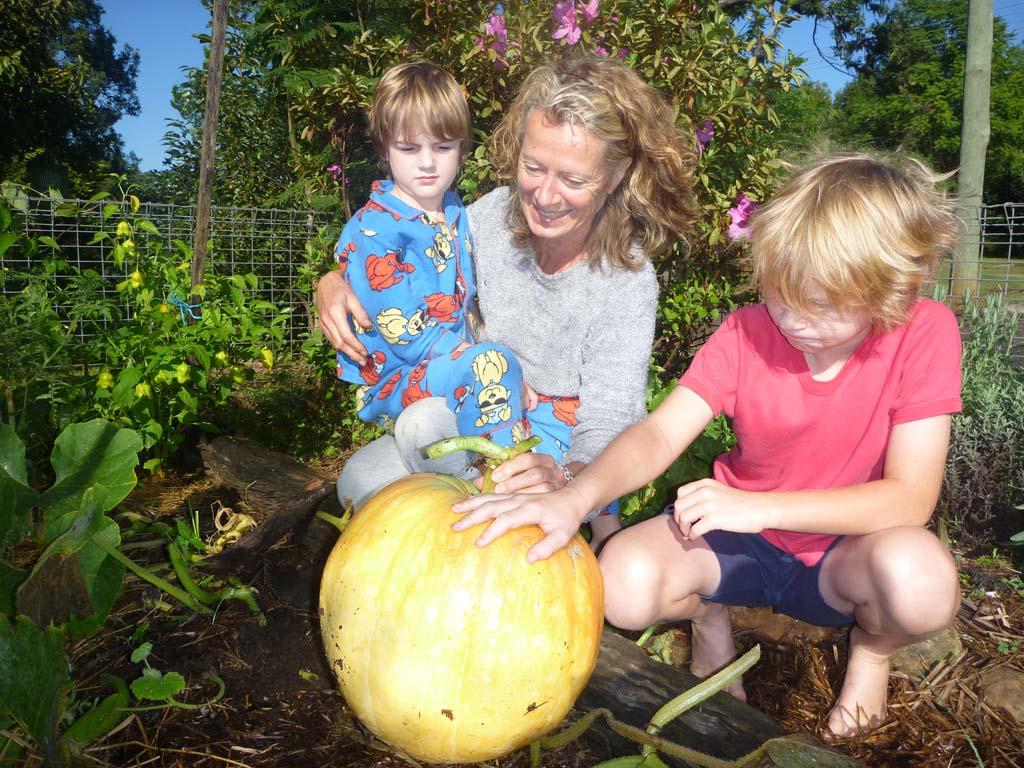 2010 finns pumpkin
