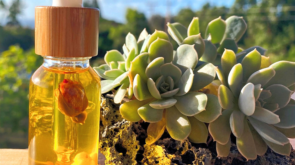 Lokelani Essentials - Everlasting oil blend