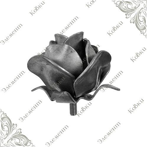 Роза 136/95