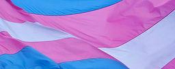 transgender flag 12345566722.jpg