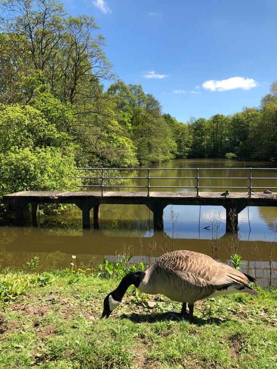 Buckshaw Village Annual  Photographic Competition 2018