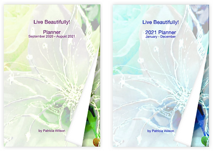 2021 Planners PatriciaCWilson.com.png
