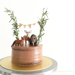 I think this cake has officially made it to the top of my list of most favorite design. Woodlands th