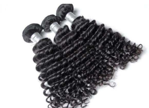 Eurasian Curly