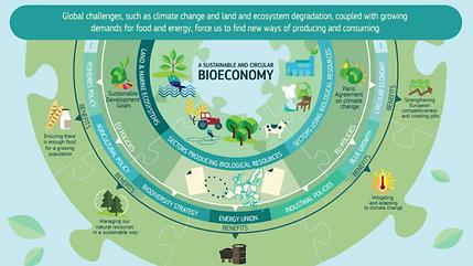 Bioøkonomi-777x437.png