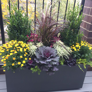 Balcony Autumn Containers
