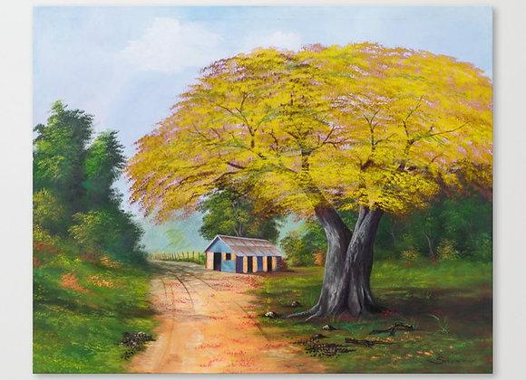 "Yellow Flamboyan Canvas 22""x18"""