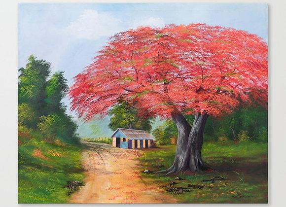 "Red Flamboyan Canvas 30""x24"""