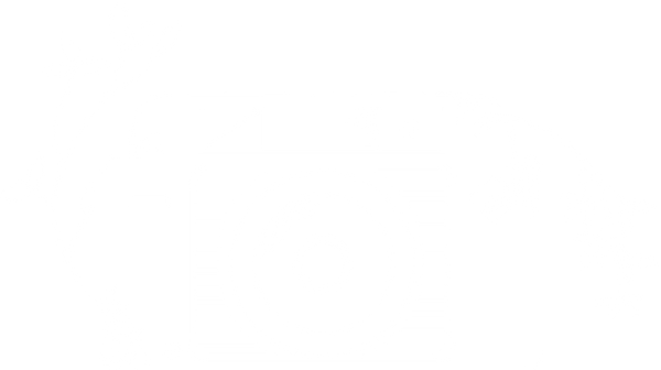 RMC camera.png