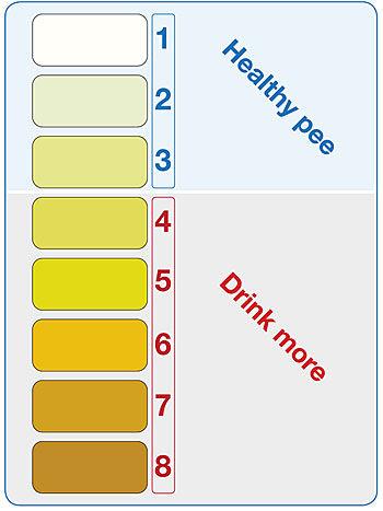 urine-chart.jpg