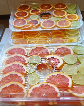 Dehydrating fruit