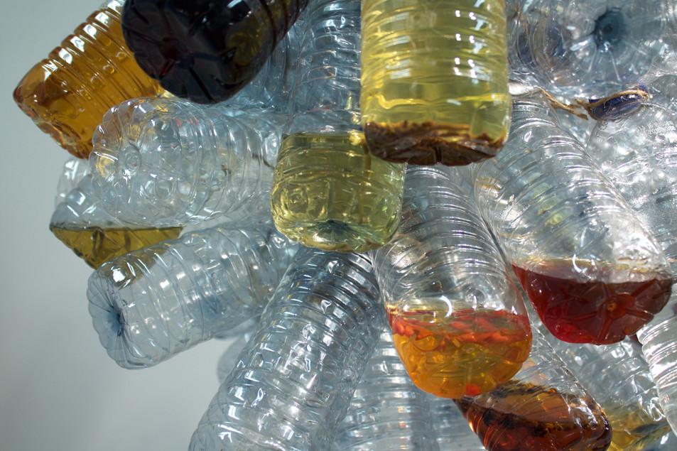 Bottle Life