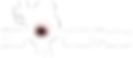 vlcipole_logo_ok.png