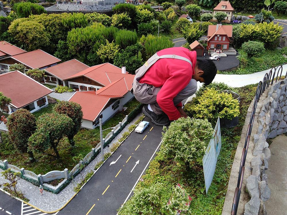 jardineiro fazendo manutenção minimundo
