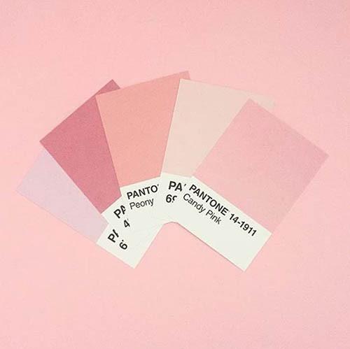 cartela millenial pink
