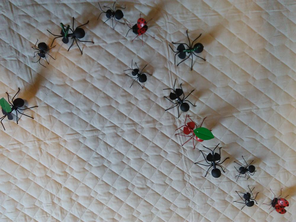 formigas artista desconhecido Tiradentes - MG
