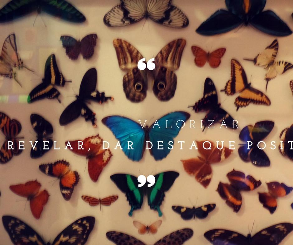borboletas frase valorizar