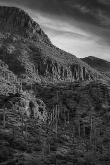 Gate's Pass, Tucson Mountains, Arizona. 2017