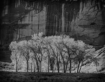Under Light, Canyon de Chelly National Monument, Arizona. 2017
