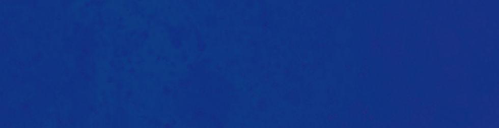 Blue%20Strip_edited.jpg