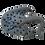 Thumbnail: Stingray Ornament
