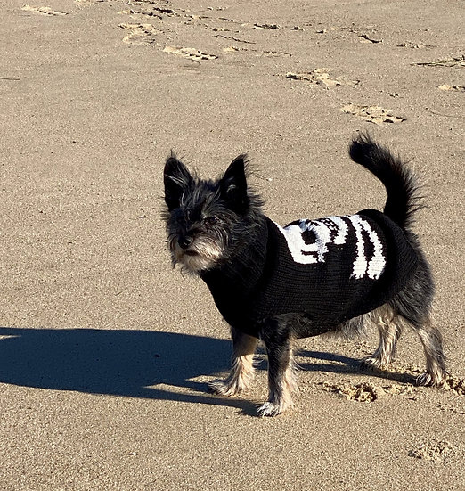 Scull & Crossbones Dog Sweater