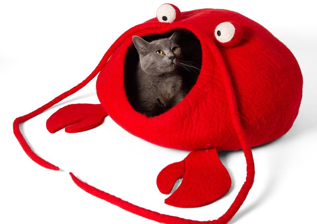 Lobster Cat Cave