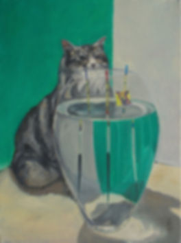 Cat and Fish Tank.jpg
