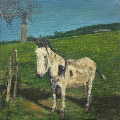 A Donkey in Mont d'Or.jpg