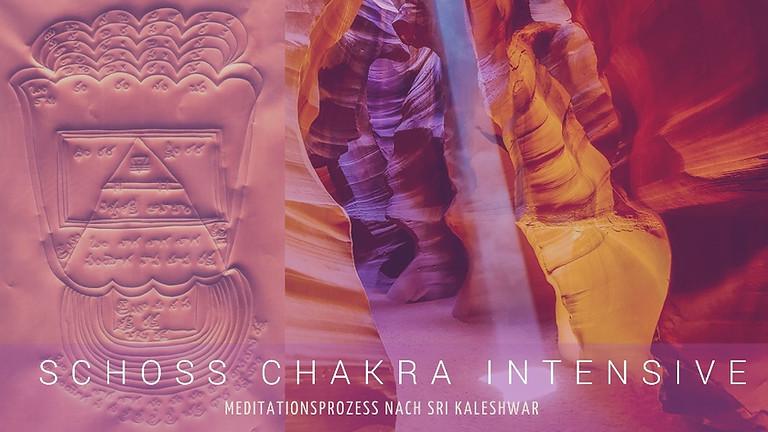 Schoss Chakra Intensive