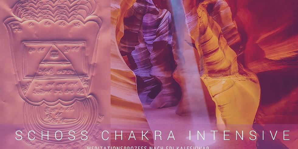 INFOABEND Schoss Chakra Meditationsprozess