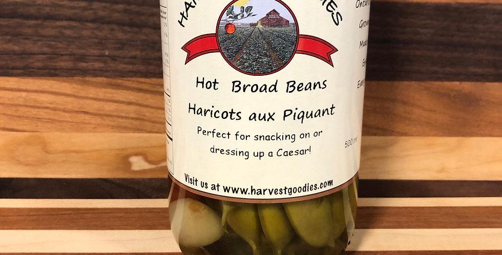 Harvest Goodies Hot Broad Beans(500ml)
