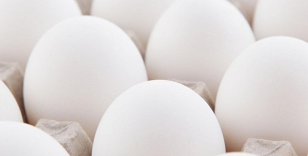 Large Eggs - 1 Dozen (white)